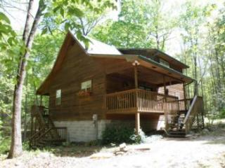 Nature's Delight - Cosby vacation rentals
