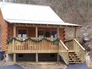 Romantic 1 bedroom Townsend Cabin with Internet Access - Townsend vacation rentals