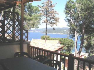 Grazioso Bilocale vista mare - Marciana vacation rentals