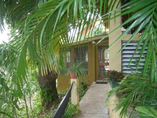 Beautiful Condo with Internet Access and Outdoor Dining Area - Sabana Grande vacation rentals