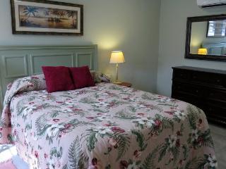 #1 Rated Rental in PR! Coquis Hideaway @ El Yunque - Rio Grande vacation rentals