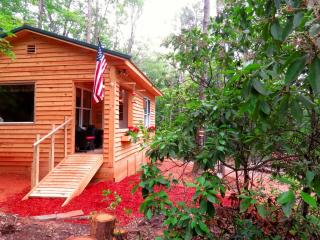 Perfect Cottage with Internet Access and A/C - Cleveland vacation rentals