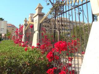 Duplex within walking distance to beach - Torrevieja vacation rentals