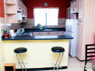 2 bedroom Apartment with Internet Access in Kingston - Kingston vacation rentals