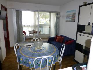 Romantic 1 bedroom Le Grau Du Roi Condo with Television - Le Grau Du Roi vacation rentals