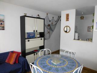 Bright 1 bedroom Condo in Le Grau Du Roi with Freezer - Le Grau Du Roi vacation rentals
