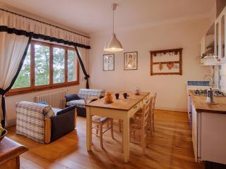 Light, modern apartment on Chianti wine farm - Greve in Chianti vacation rentals