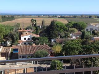 Nice Condo with Water Views and Microwave - Sant Pere Pescador vacation rentals