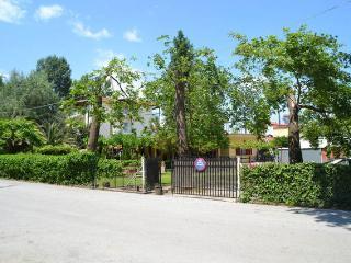 Perfect 2 bedroom House in Platamon - Platamon vacation rentals