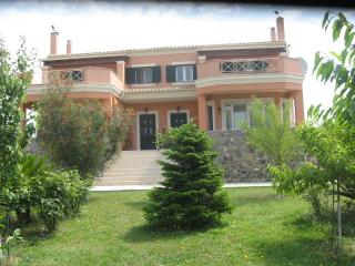 (Bella's Home) 4 Bedroom House near Corfu Town - Corfu Town vacation rentals