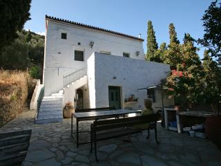 Beautiful Family Traditional Villa - Andros Town vacation rentals