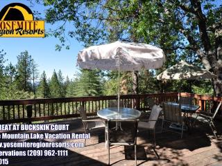WIFI, Mountain Views, Large Deck, Near Yosemite - Groveland vacation rentals