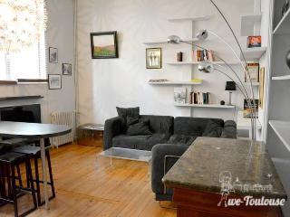 Beau T4 Jean Jaurès Toulouse - Toulouse vacation rentals