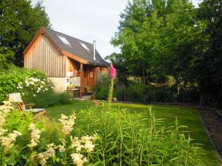 Nice Cottage with Internet Access and Outdoor Dining Area - Roosdaal vacation rentals