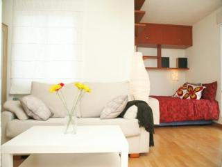 Madrid - Princesa Apartment - Madrid vacation rentals