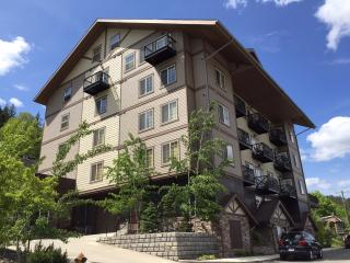 Alpine Village Luxury Condo - Kellogg vacation rentals