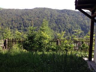 Andu's Chalet in Azuga, Transylvania - Azuga vacation rentals