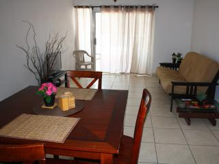 Condado Ave. Apartment in San Juan - San Juan vacation rentals