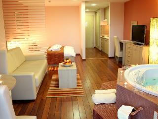 TH00438 Hotel Villa Magdalena / Spa Premium Room A2 - Krapinske Toplice vacation rentals