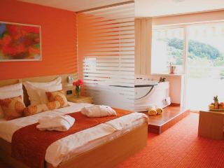 TH00438 Hotel Villa Magdalena / Spa Premium Room A9 - Krapinske Toplice vacation rentals