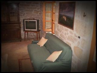 2 bedroom Condo with Internet Access in Cerovlje - Cerovlje vacation rentals