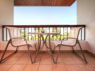 TERRIFIC 140m2 & JACUZZI, Steps to Plaza Bavaro. - Bavaro vacation rentals