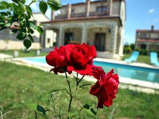 TH00467 Luxury Villa Astoria 7 - Cabrunici vacation rentals