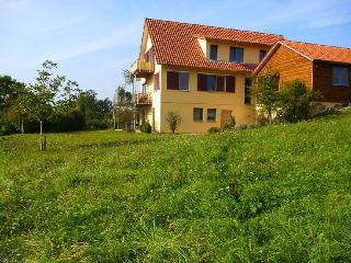 Vacation Apartment in Sternenfels - 484 sqft, 2 bedrooms, max. 5 people (# 8543) - Sternenfels vacation rentals