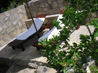 2 bedroom Condo with Television in Maslinica - Maslinica vacation rentals