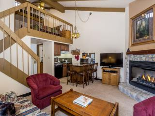 Comfortable & Affordable Condo - Sleeps 6!!! - Yosemite National Park vacation rentals