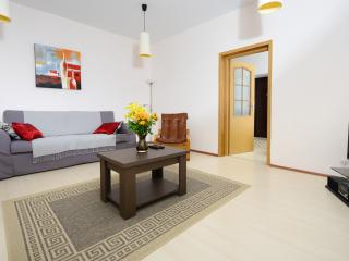 Kaira Apartment in the Heart of the City - Brasov vacation rentals