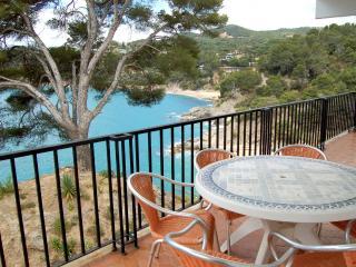 Tossa del mar Apartamento frente al mar con piscina - Tossa de Mar vacation rentals