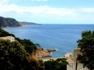 Cozy Condo with Internet Access and Television - Tossa de Mar vacation rentals