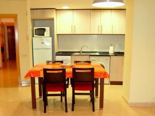 Cozy 3 bedroom Condo in Tossa de Mar - Tossa de Mar vacation rentals