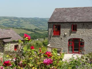 Treberfedd Farm -Old Cart House - Aberaeron vacation rentals