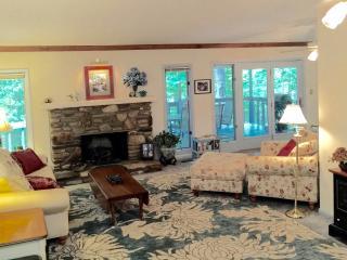 Charming 4 bedroom Vacation Rental in Brevard - Brevard vacation rentals