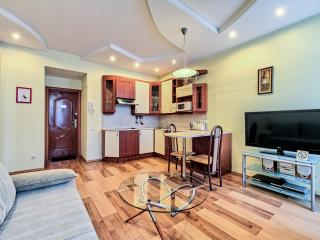 Comfortable Condo with A/C and Wireless Internet - Saint Petersburg vacation rentals