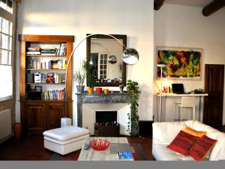 Charming and Spacious Historical Center APT in AIX - Aix-en-Provence vacation rentals