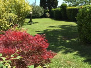 Il giardino Di Isa (Appartamento-guest house) - Certaldo vacation rentals