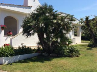 Bright 4 bedroom Villa in Rosa Marina - Rosa Marina vacation rentals