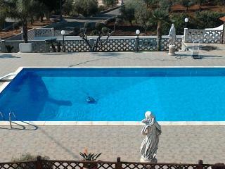 Meravigliosa villa con piscina privata in campagna - Monopoli vacation rentals