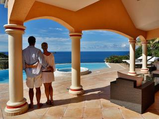 Villa 3 bedrooms St Barts Montjean Pool Jacuzzi - Saint Barthelemy vacation rentals