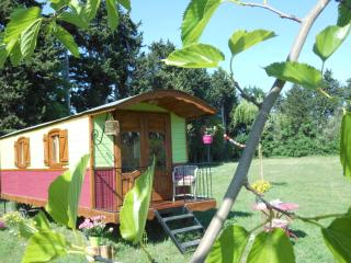 Nice Gite with Short Breaks Allowed and A/C - Saint-Remy-de-Provence vacation rentals