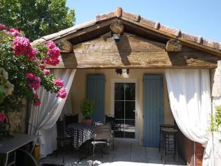 Le Mazet des Robiniers (Camargue) - L'Albaron vacation rentals