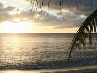 Beautiful Condo with Internet Access and A/C - Rincon vacation rentals