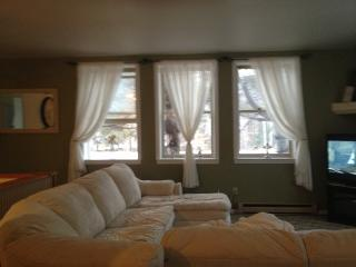 Cozy Condo with Internet Access and Television - North Woodstock vacation rentals