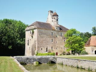 le Vieux Château du 15ème siècle - Thenissey vacation rentals