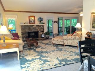 Charming 4 bedroom House in Brevard - Brevard vacation rentals