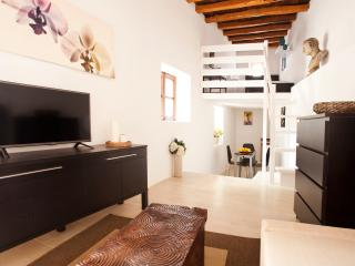 Amazing apartment in Ibiza's historical Old Town - Ibiza Town vacation rentals