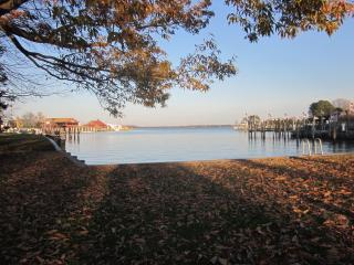 Premier Cottage in St. Michaels- In Town Location! - Saint Michaels vacation rentals